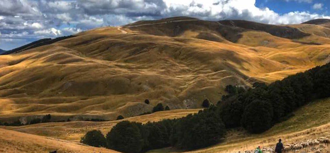 Practicum: Exploring Mountain Society in Ancient Samnium