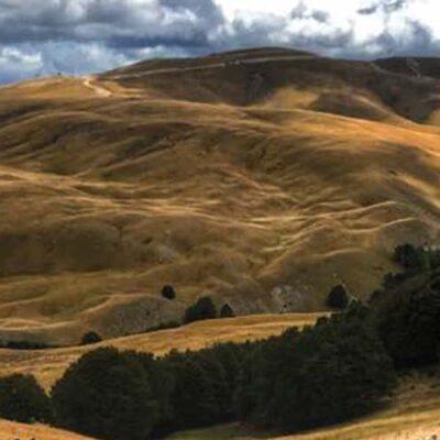 Header Website Mountain Society